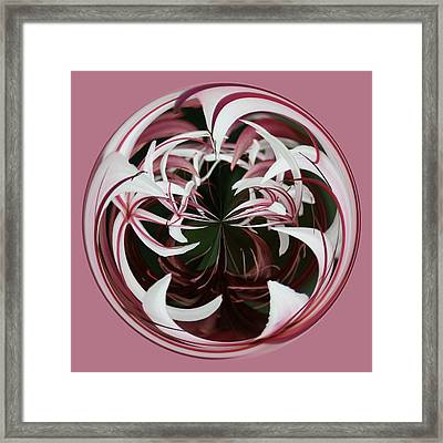 Framed Print featuring the photograph Spider Lily Orb by Bill Barber