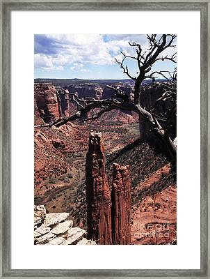 Spider Rock Framed Print by Thomas R Fletcher