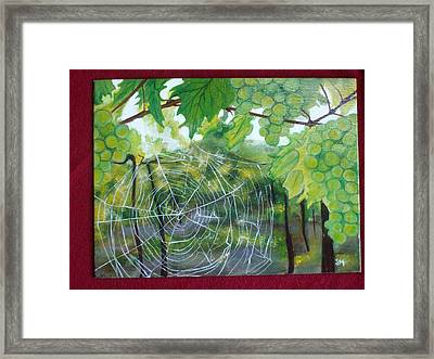 Spider Web In Spring Framed Print by Jessica Meredith