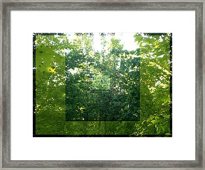 Framed Print featuring the photograph Spider-web Squares by Michelle Audas