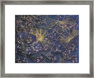 Spider Webs And Bloosoms Framed Print by Ethel Vrana