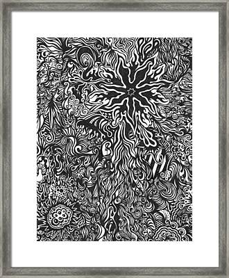 Spider's Web Framed Print by Mandy Shupp
