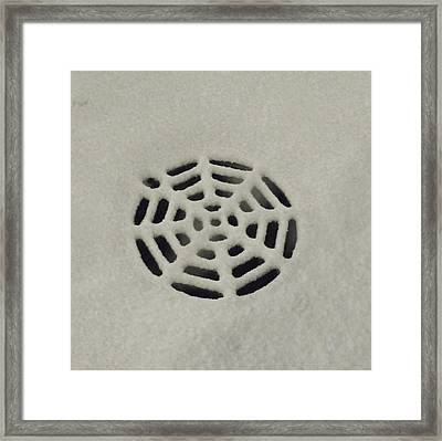 Spiderweb In The Snow Framed Print
