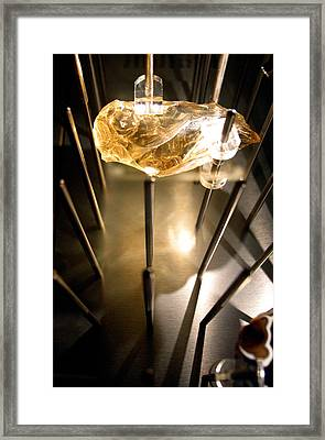 Spiked Framed Print by Jez C Self