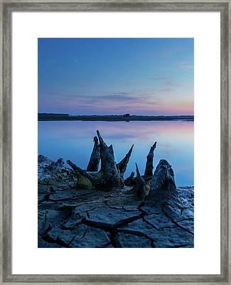 Spikes In Blue Framed Print