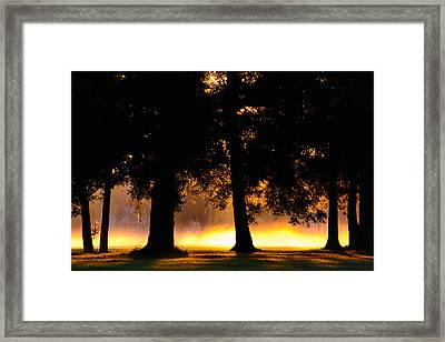 Framed Print featuring the photograph Spilled Suinshine by Tikvah's Hope