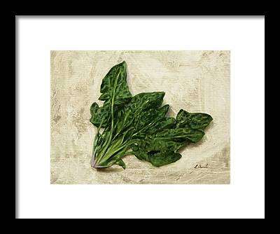Spinach Framed Prints