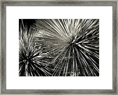 Framed Print featuring the photograph Spines Of The Times by Karen Musick