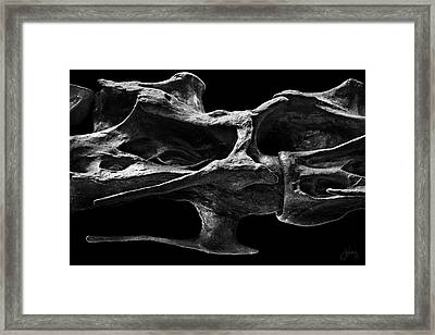 Framed Print featuring the photograph Spinework by Joseph Westrupp