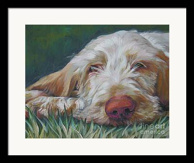 Spinone Framed Prints
