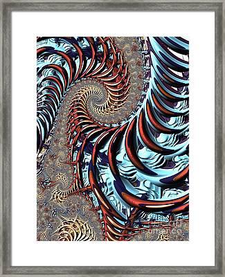 Spiral Cage Framed Print