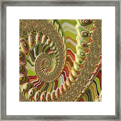 Framed Print featuring the photograph Spiral Fractal by Bonnie Bruno