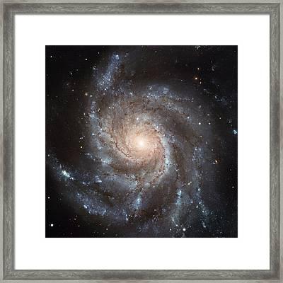 Spiral Galaxy - Messier 77 Framed Print