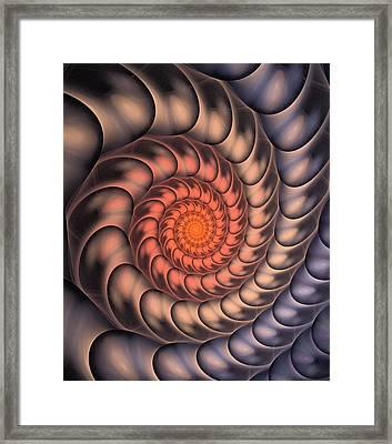 Framed Print featuring the digital art Spiral Shell by Anastasiya Malakhova