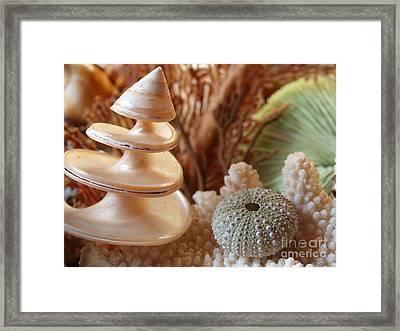 Spiral Framed Print by Trena Mara
