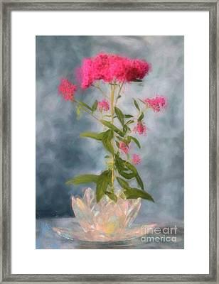 Spirea In Crystal Framed Print