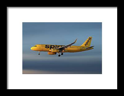 Spirit Airlines Framed Prints