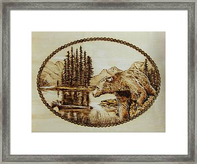 Spirit Bear Framed Print by Chris Wulff