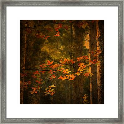 Spirit Fall Framed Print