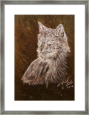 Spirit Fox  Framed Print by Rick Silas