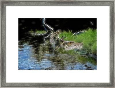Spirit Garden 4 Framed Print by William Horden