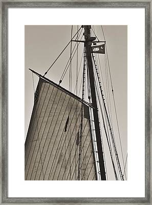 Spirit Of South Carolina Schooner Sailboat Sail Framed Print