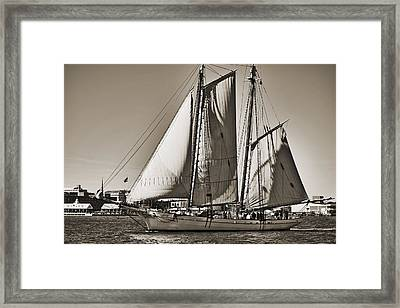 Spirit Of South Carolina Schooner Sailboat Sepia Toned Framed Print