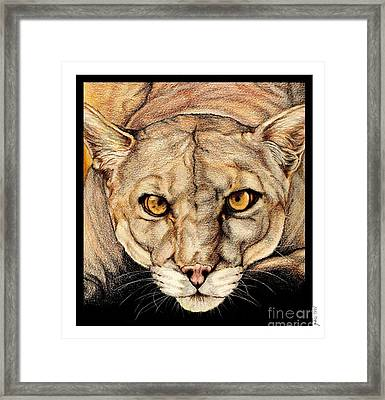 Spirit Of The Everglades Framed Print