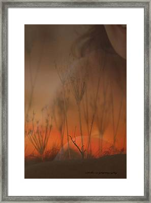 Spirit Of The Land Framed Print