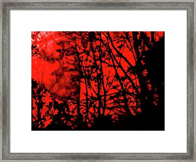 Spirit Of The Mist Framed Print