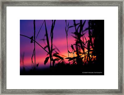Spirit Of The Morning Framed Print by Everett Houser