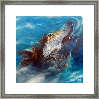 Spirit Of The Wolf Framed Print by Brian  Commerford