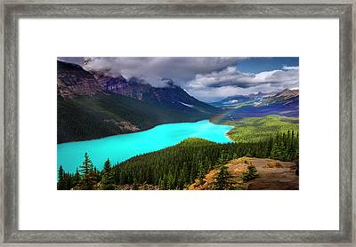 Framed Print featuring the photograph  Spirit Of The Wolf by John Poon