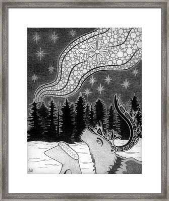 Spirit Of Wonder Framed Print
