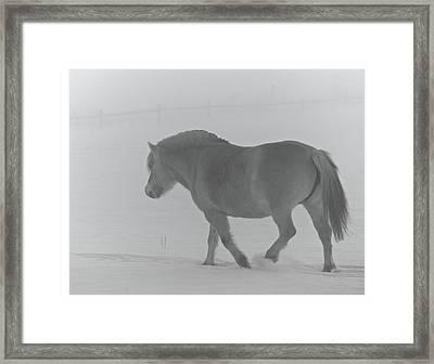 Spirit Two Framed Print by Odd Jeppesen