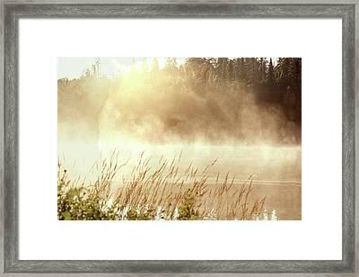 Spirit Wolf Framed Print