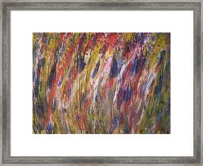 Spirits Rising Framed Print by Don Phillips