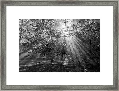 Spiritual Picnic Framed Print