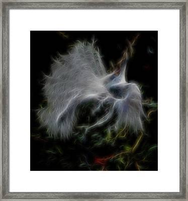 Spiritual Plumage Framed Print by William Horden