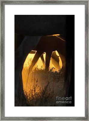 Spiritual Walker Framed Print by Nicole Markmann Nelson