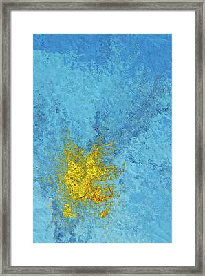 Splash 2 Framed Print by Jack Zulli