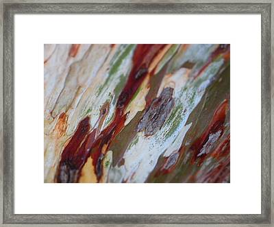 Splash Of Amber Framed Print