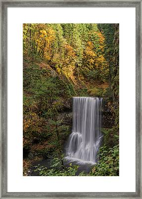 Splash Of Autumn Framed Print by Loree Johnson