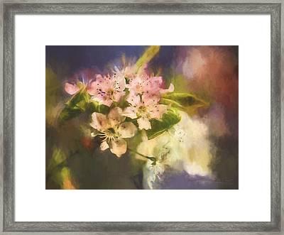 Splash Of Spring Framed Print