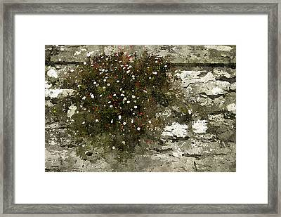 Framed Print featuring the photograph Splash by Tom Vaughan