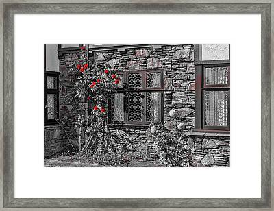 Splashes Of Red Framed Print