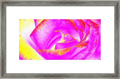 Framed Print featuring the mixed media Splendid Rose Abstract by Will Borden