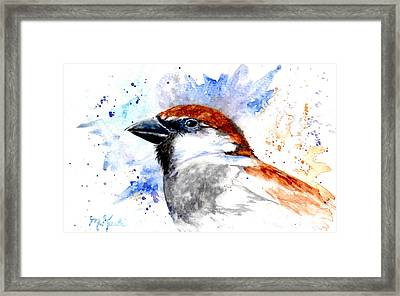 Splendid Sparrow Framed Print