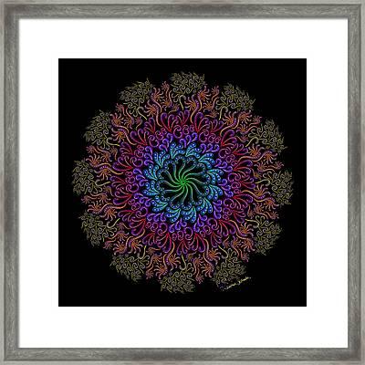 Splendid Spotted Swirls Framed Print
