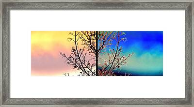 Framed Print featuring the digital art Splendid Spring Fusion by Will Borden